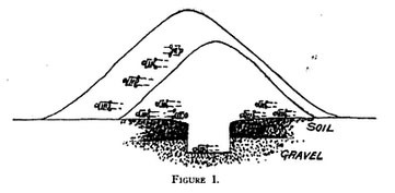 Adena Mound Expansion