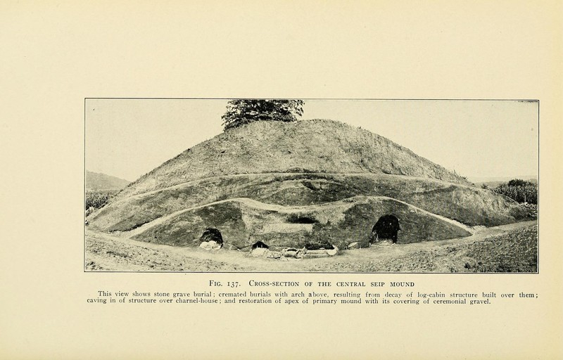 Middle Woodland Period The Hopewell Culture 183 The